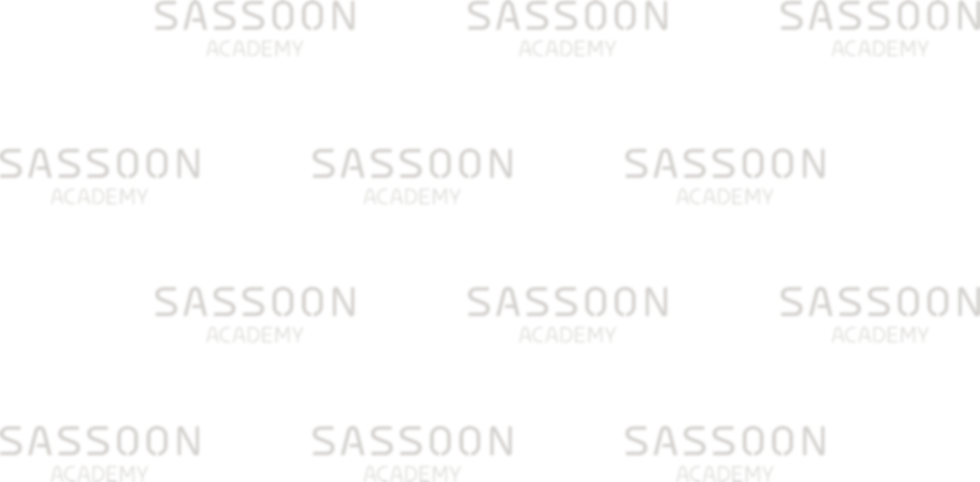 sassoon academy logo background slider image with transparency extra light and blur